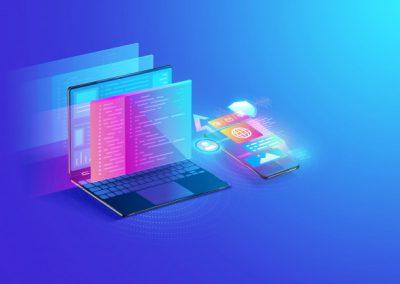 Experto web y multimedia e-commerce 2.0