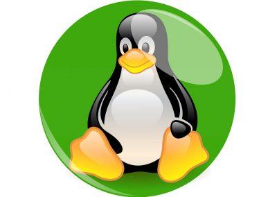 Curso de Administración Básica de Linux